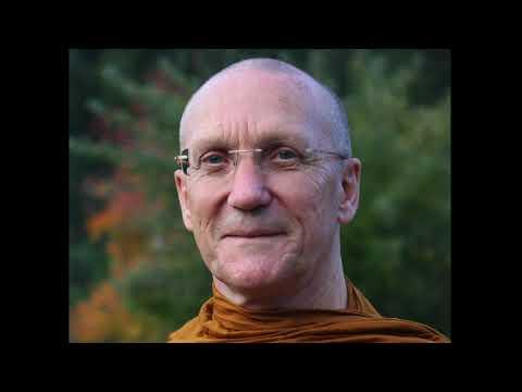 Guided Metta Meditation (Vintage 2008 talk) - Ajahn Pasanno