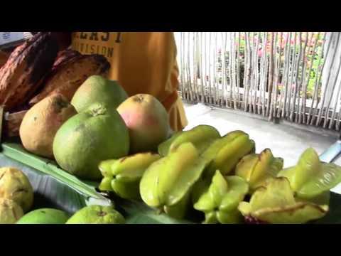 Castries Saint Lucia 2017