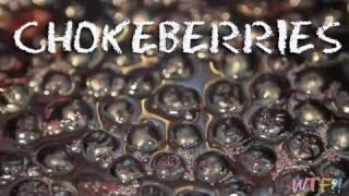 What Are Chokeberries? / Chokeberry Pineapple Gelatin