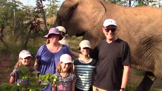Victoria Falls Elephant Encounter - All Packages