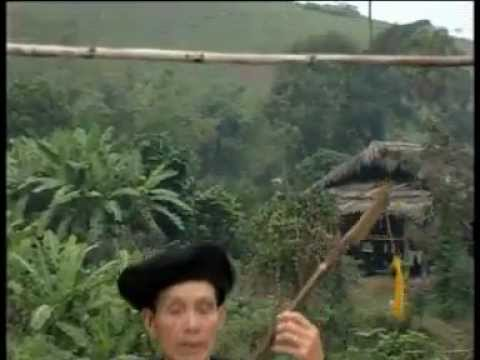 Bách Hoa Mừa Tàng (then lời cổ)