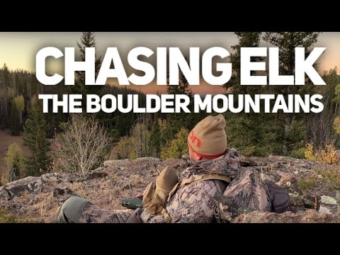 2019 Utah Elk Hunt In The Boulder Mountains