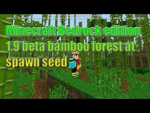 Minecraft Bedrock Edition 1 9 Beta Bamboo Forest At Spawn Seed Youtube