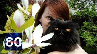 Коты и морские свинки: Зачем Британия кремировала питомцев Скрипаля? 60 минут
