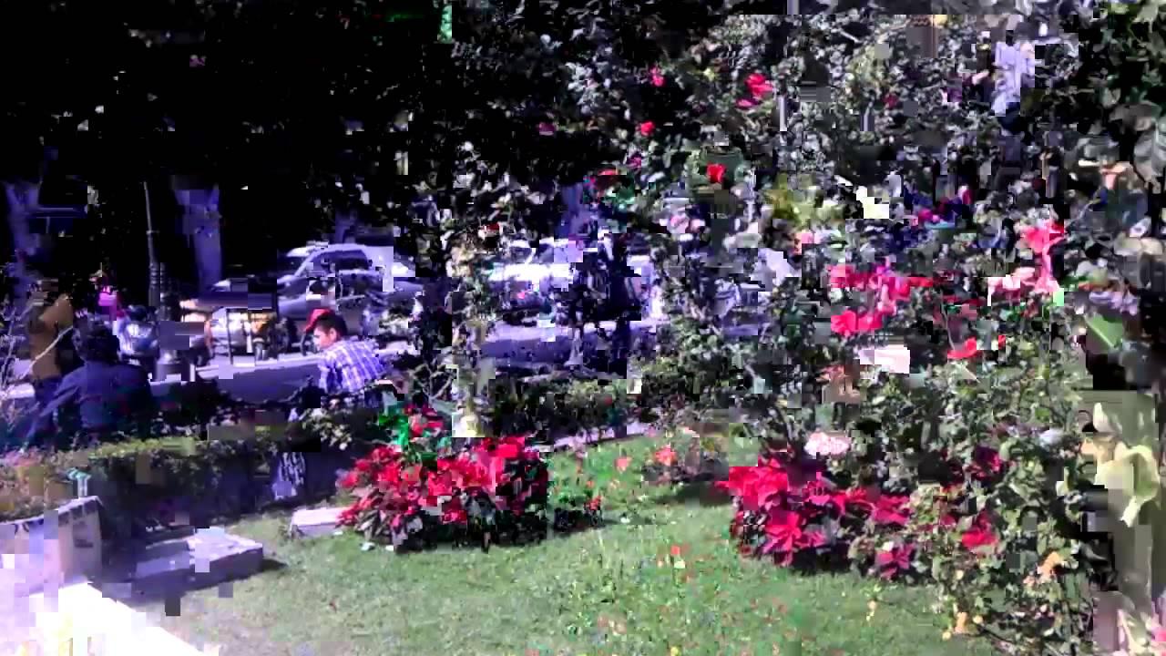 Jardin de penjamo diciembre 2011 youtube for Jardin youtube