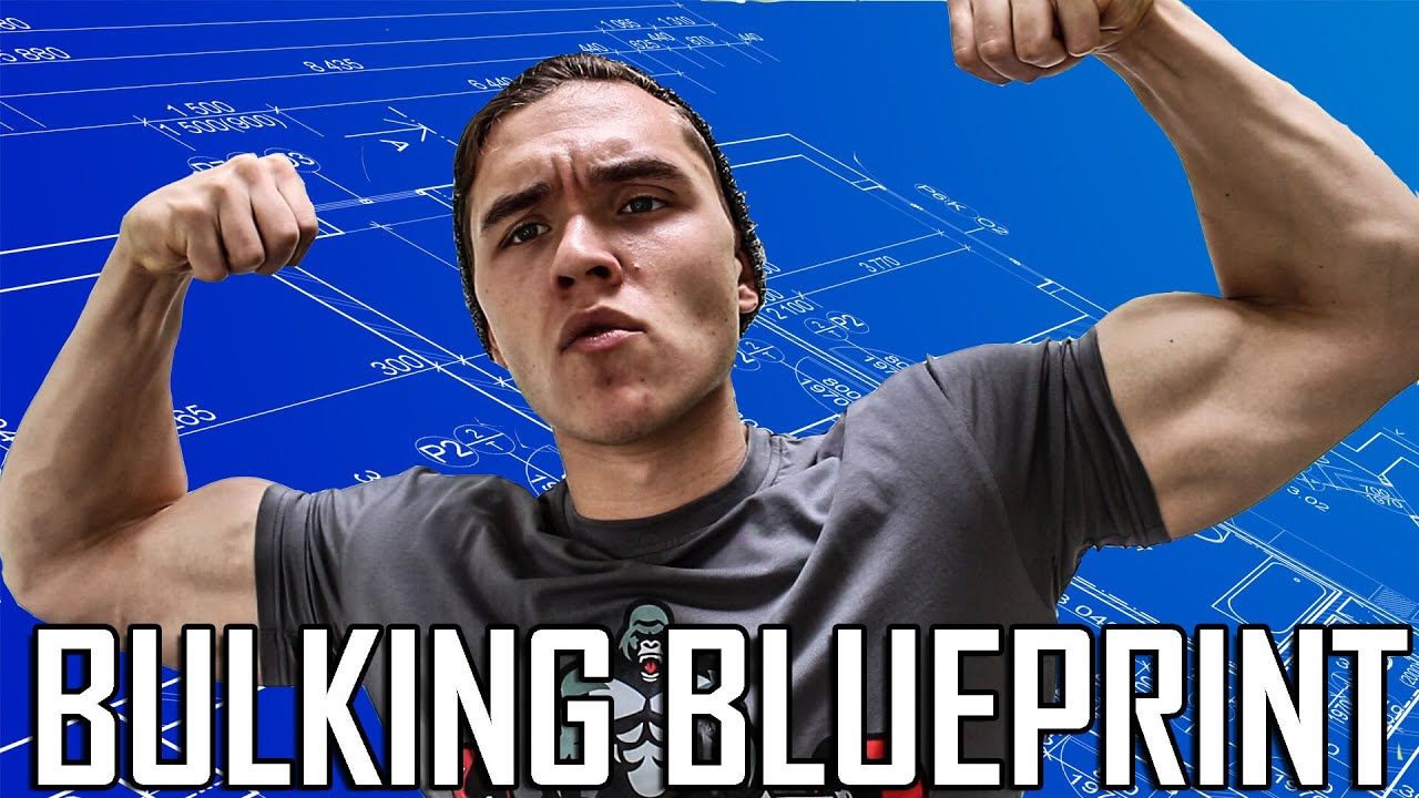 The bulking blueprint complete guide to bulking youtube the bulking blueprint complete guide to bulking malvernweather