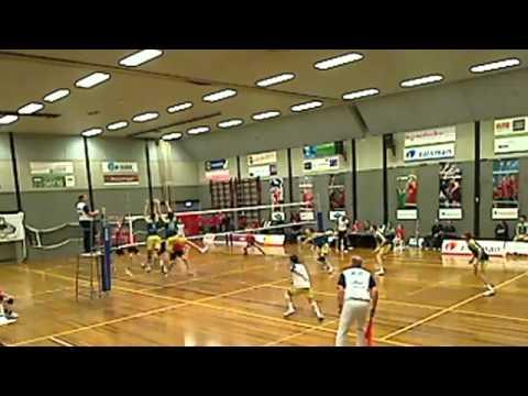 Volleybal Reflex Landstede