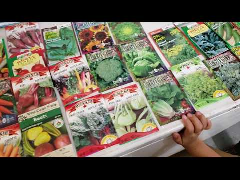 Vegetables That Grow Well In Pacific Northwest And British Columbia - Part 1