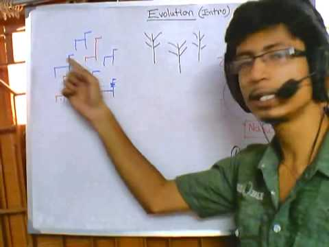 Evolution part 1, introduction to natural selection