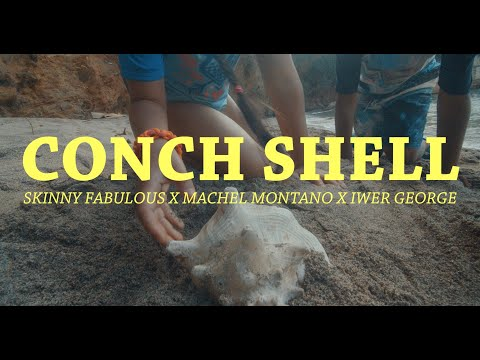 Смотреть клип Skinny Fabulous X Machel Montano X Iwer George - Conch Shell