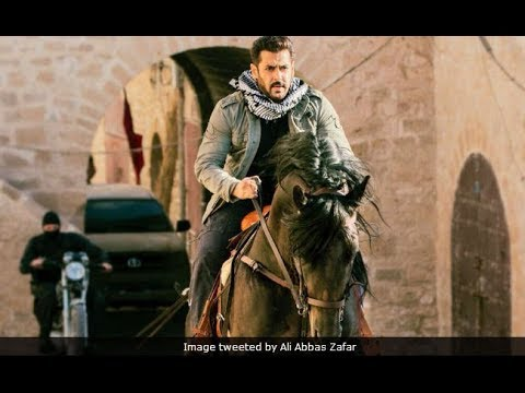 Tiger Zinda Hai Dialogue | Salman Khan | Katrina Kaif | Ali Abbas Zafar