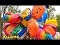 Balita Lucu Beli Balon Karakter   Balonku Ada Lima Lagu Anak Balita Populer