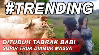 Dituduh_Tabrak_Babi_Milik_Warga,_Sopir_Truk_di_Papua_Tewas_Dihakimi_Massa_-_BIM_27/02