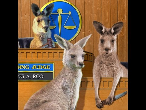 Color of Law Statutes - all statutes are a fraud - Satanic Kangaroo Courts 15