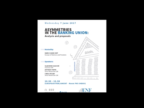 Asimmetrie Nell'Unione Bancaria
