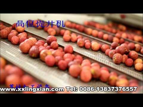 Tropical Fruit Processing Equipment 3-8 t/h , peeling and juicing machinery
