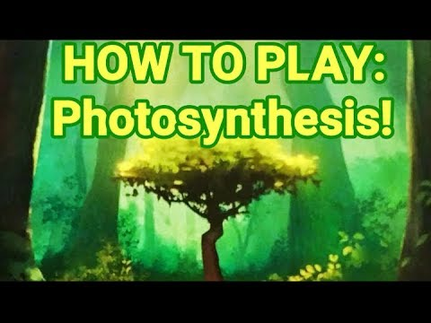 Photosynthesis Board Game!