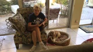 Testimonial- All Star Coco Dog Training, Llc