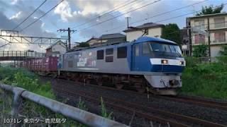 貨物列車撮影記 東海道本線 草薙~清水間 2019/7/27
