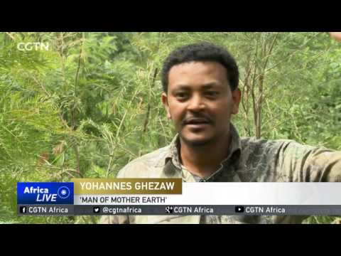 Deforestation in Ethiopia: Environmentalist plants thousands of trees to save his country