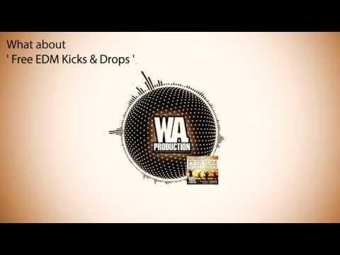 350+ FREE EDM Big Room Tuned Kick Samples & Drop Loops + MIDI (W. A. Production Free Download)