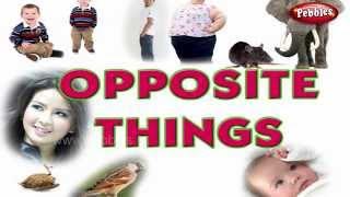 Opposites   Opposite Words   Pre School Basics for Kids   Basic English Grammar for Children