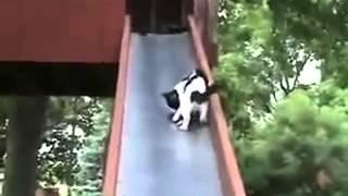 滑り台での1コマ.