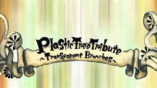 Plastic Tree トリビュートアルバム「Plastic Tree Tribute~Transparent Branches~」【Trailer】