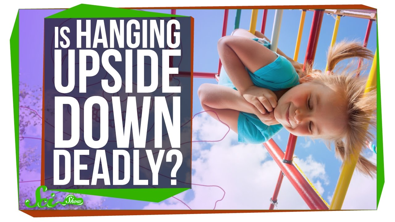 Science Video: Will I Die From Hanging Upside Down? Watch