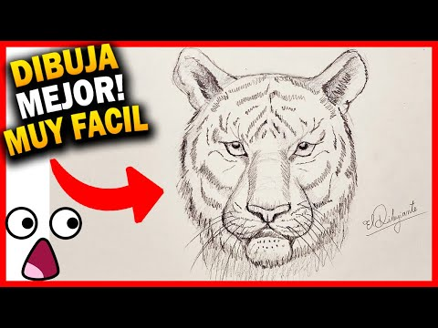 Dibujos De Tigres De Bengala Para Imprimir Dibujos De Tigres Para