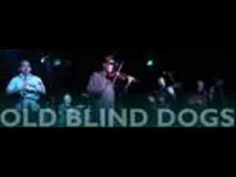'Bedlam Boys' {studio & live} ~ Old Blind Dogs