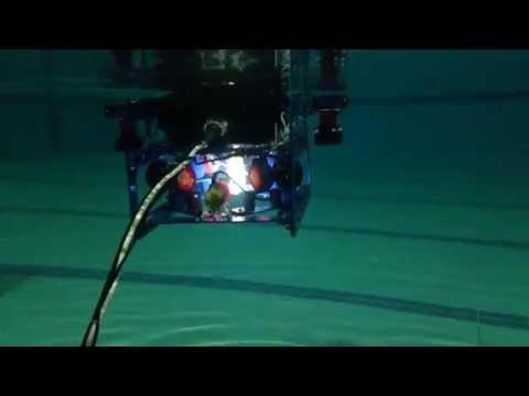 Shark ROV AASTMT