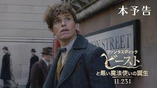 映画『ファンタスティック・ビーストと黒い魔法使いの誕生』本予告【HD】2018年11月23日(金・祝)公開