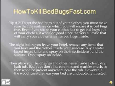 Learn How To Get The Bed Bugs Out Of Your Clothes Quick Youtube