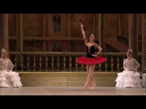 An extract from Don Quixote (Bolshoi Ballet)