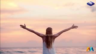 3 Hours Best Calming Music   Relax Sleep Study Meditation 03