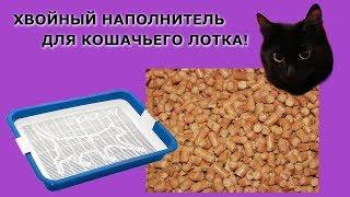 Обзор хвойного наполнителя для кошачьего лотка