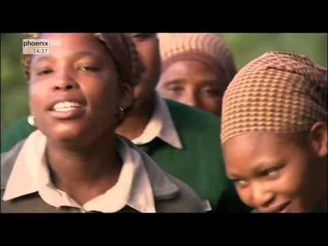 Traumflug Durch Afrika (2/2) Vom Okavango Zum Äquator - Dokumentarfilm