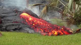 Kilauea eruption of Pahoehoe lava at My friend's house update 7:08 AM May 31, 2018.  Leilani Estates