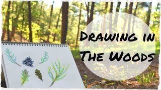 Drawing in the Woods (Chill AF video)