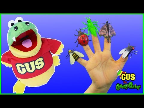 Family Finger Nursery Rhyme Song Learn Animals and Bugs