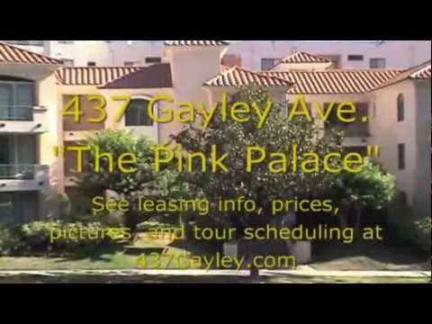 The Pink Palace Video Tour