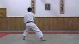 Taikyoku Shodan Shotokan