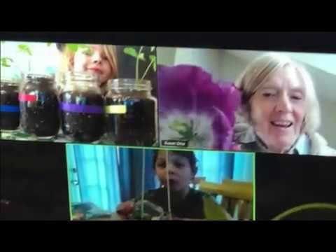 Carden Country School Distance Learning 2