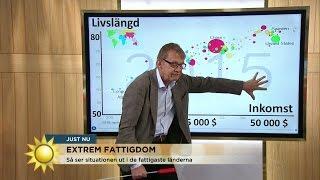 """Hans Rosling: """"Återupprätta statens våldsmonopol"""" - Nyhetsmorgon (TV4)"""
