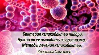 Бактерия хеликобактер пилори. Нужно ли ее выводить из организма. Методы лечения хеликобактер!