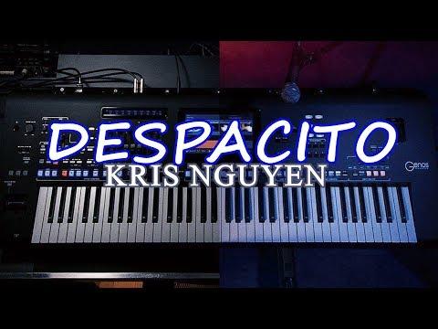Despacito Remix (EDM Pop) - Organ cover by Kris