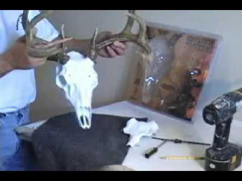 Skull Master European Deer Antler Mounting Kit: How-to