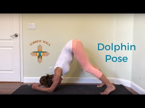 Forrest Yoga: Dolphin Pose