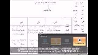 Арабский язык лучший способ обучения ummati umi ru